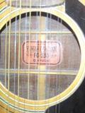 トミヤ楽器のFG230(12弦).JPG