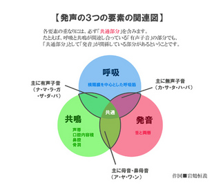 発声の3つの要素の関連図のコピー.jpg